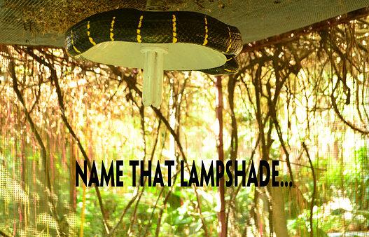 Thailand snake lampshade.