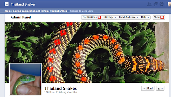 Thailand Snakes forum over at Facebook