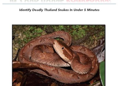 Is that snake in your house dangerous book to help people identify dangerous southeast asia snakes.